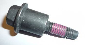 Ecotec Timing Chain Tensioner Bolt 11588522