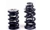 Brian Crower SRT-4 Valve Spring and Titanium Retainer Set